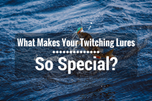 twitching lure review