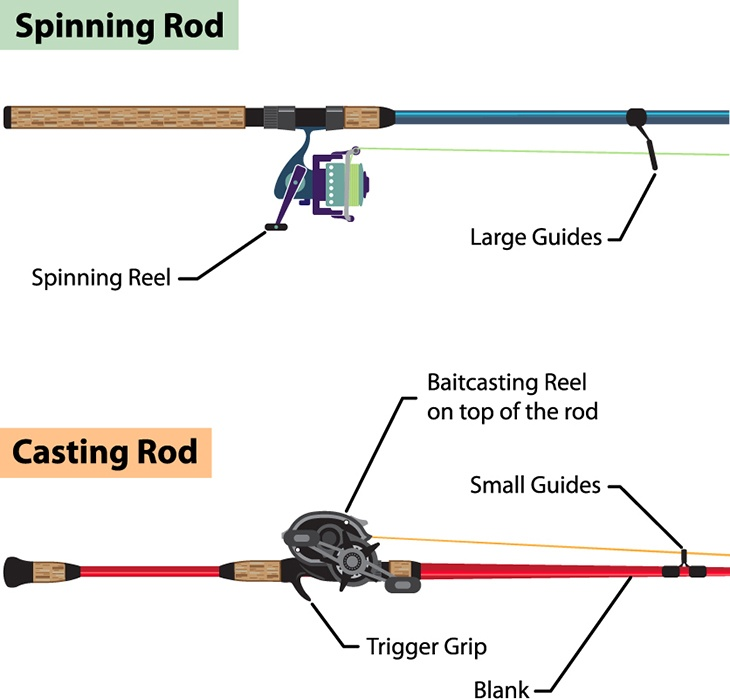 Construction of spincast reel