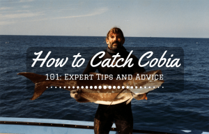 How to Catch Cobia 101- Expert Tips and Advice