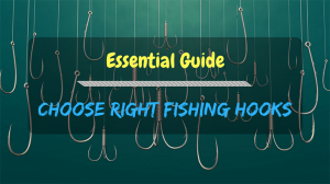 Essential Guide to Choose Right Fishing Hooks