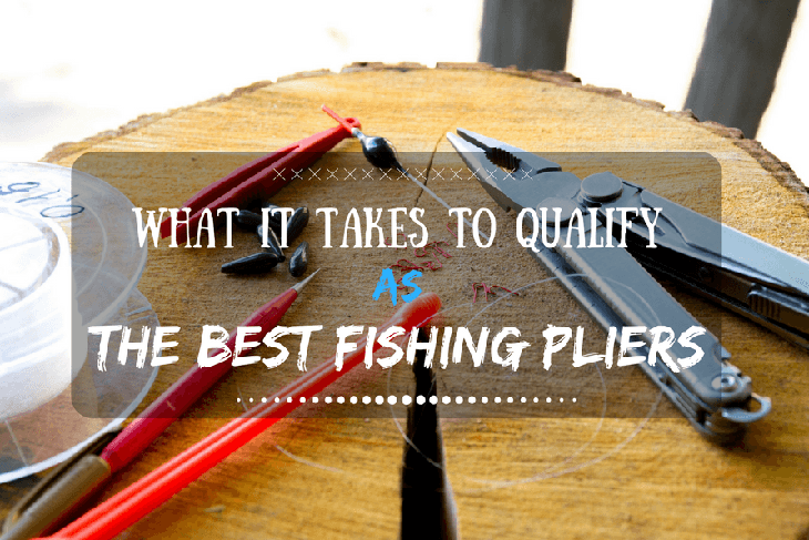 What It Takes to Qualify As the Best Fishing Pliers