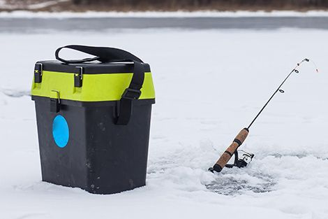 A portable cooler box