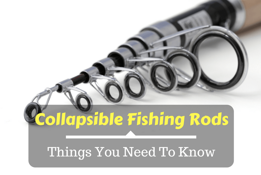 Collapsible Fishing Rods- Things You Need To Know