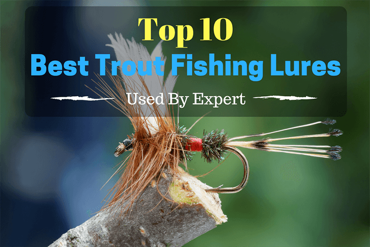Top 10 Best Trout Fishing Lures Used By Expert