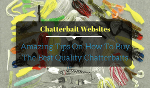 Chatterbait Websites- Amazing Tips On How To Buy The Best Quality Chatterbaits