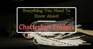Everything You Need To Know About Chatterbait Trailers