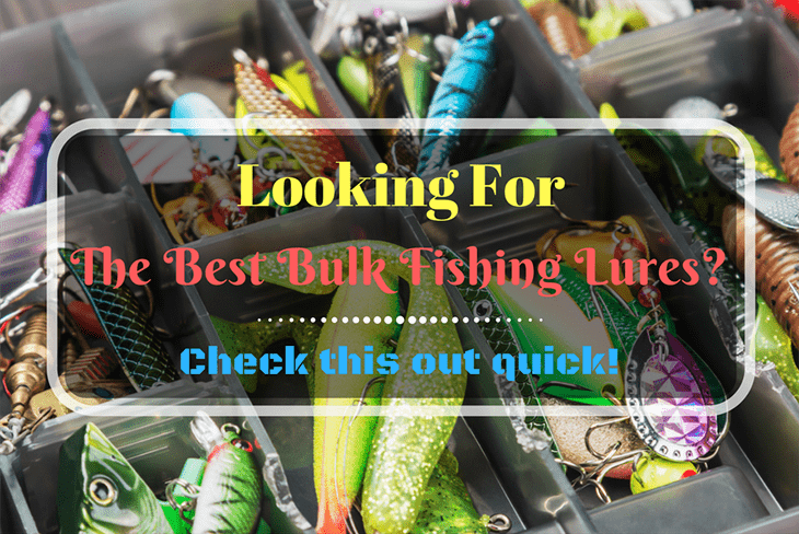 Looking For The Best Bulk Fishing Lures-min