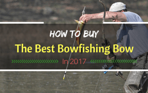 How To Buy The Best Bowfishing Bow In 2017