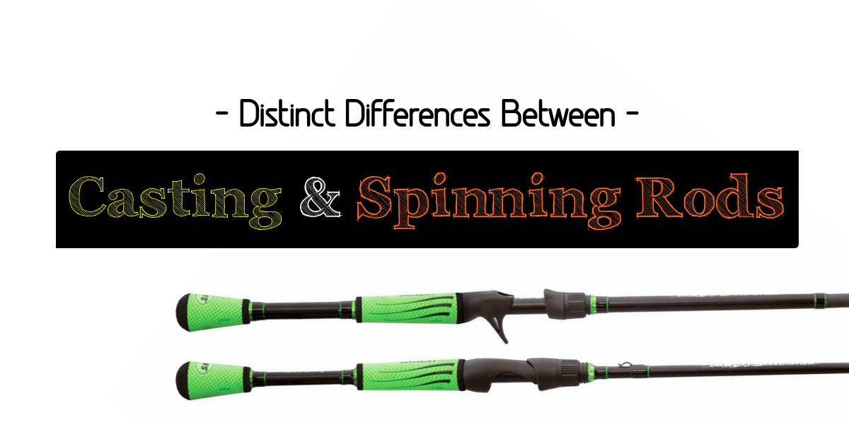 Distinct Differences between Casting and Spinning Rods