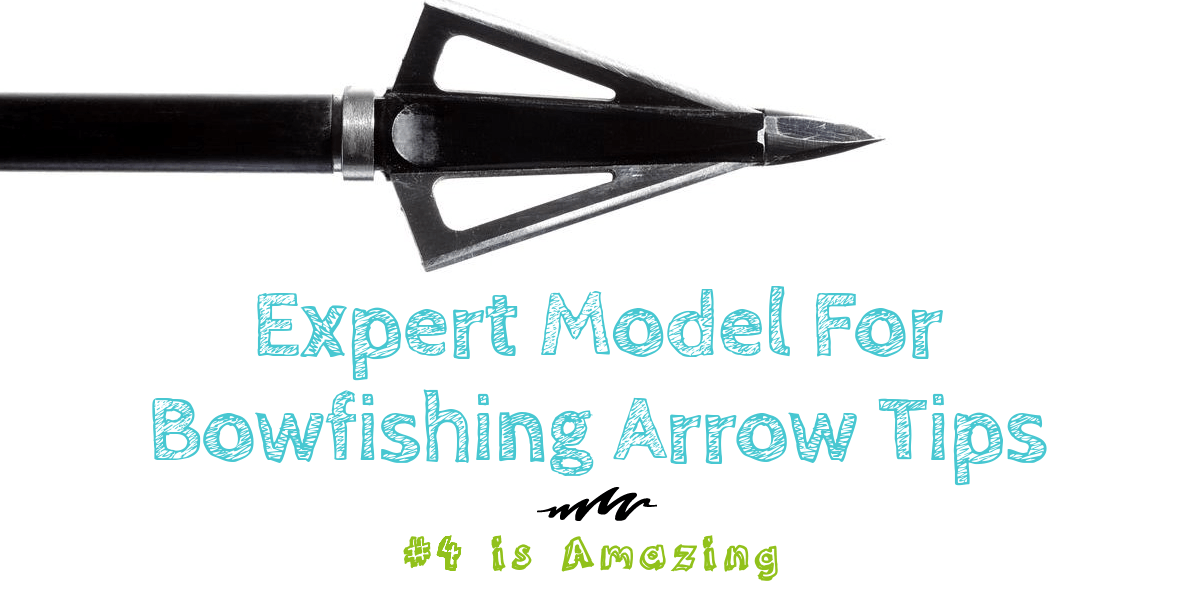 Expert Model for Bowfishing Arrow Tips: #4 is Amazing