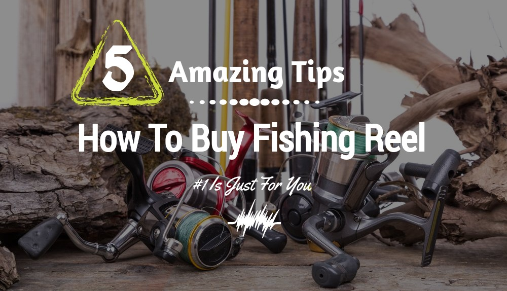 Five Amazing Tips On How To Buy Fishing Reel