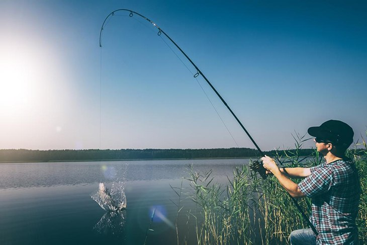 Spin Cast Reels Are Suitable For Both Beginner And Experienced Anglers