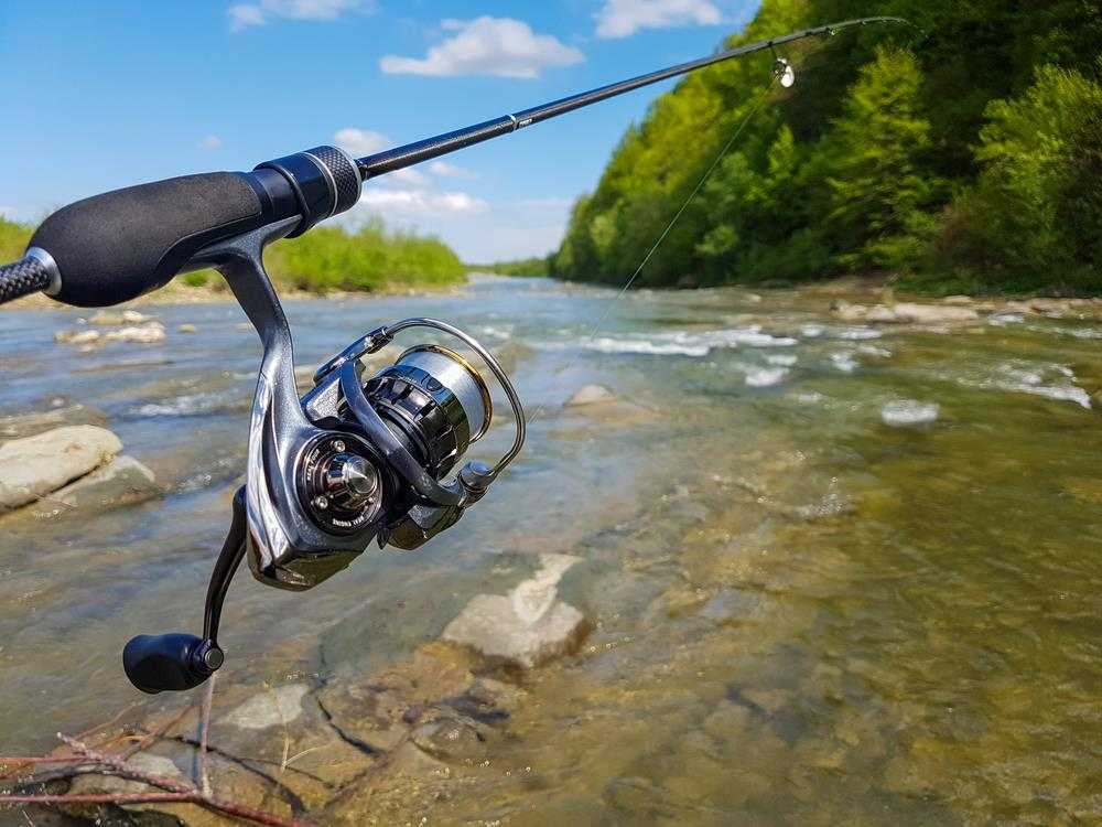 Spinning Reels Feature An Advanced Drag To Reel In Aggressive Fish