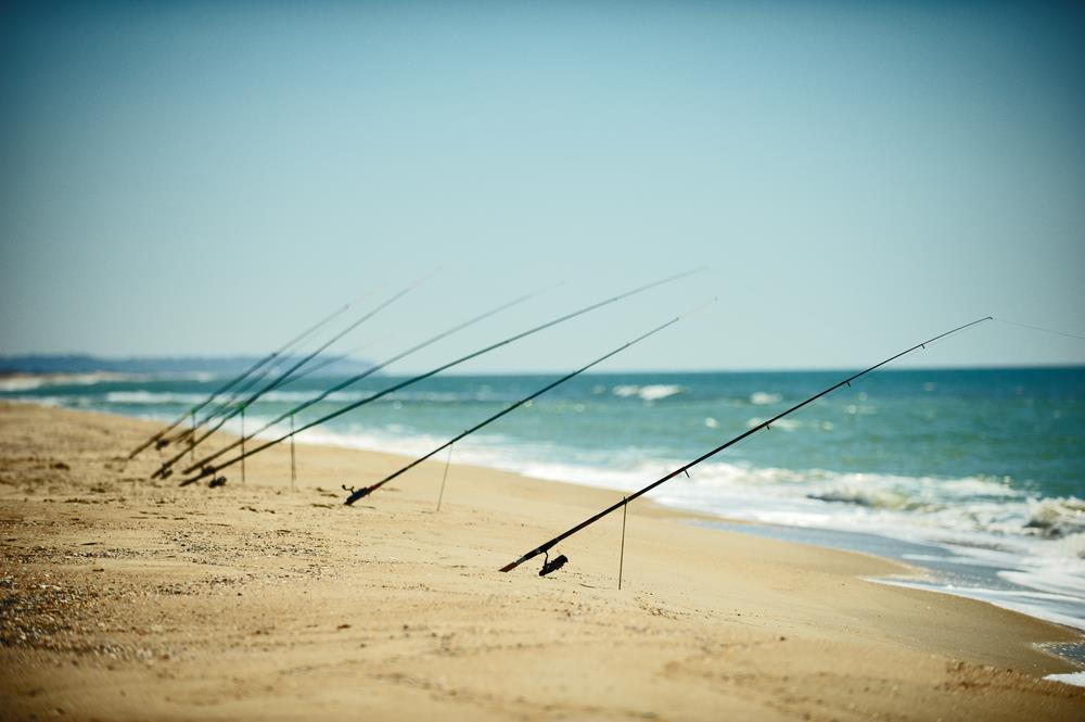 The Evolution Of Surf Fishing Rods