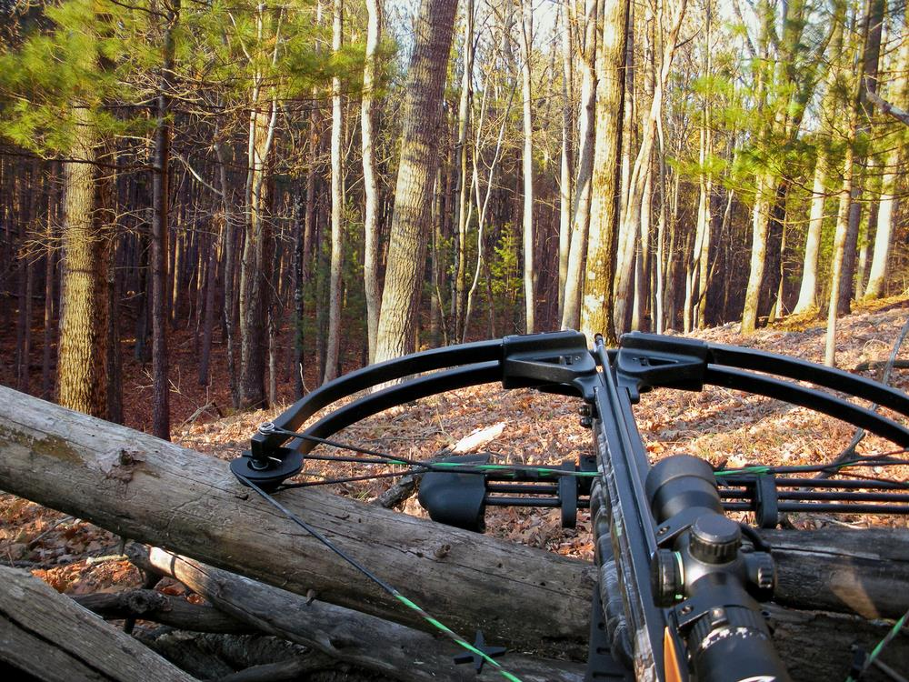 The Things You Should Know Before Buying A Crossbow