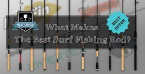 What Makes The Best Surf Fishing Rod