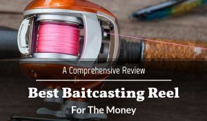 Best Baitcasting Reel For The Money