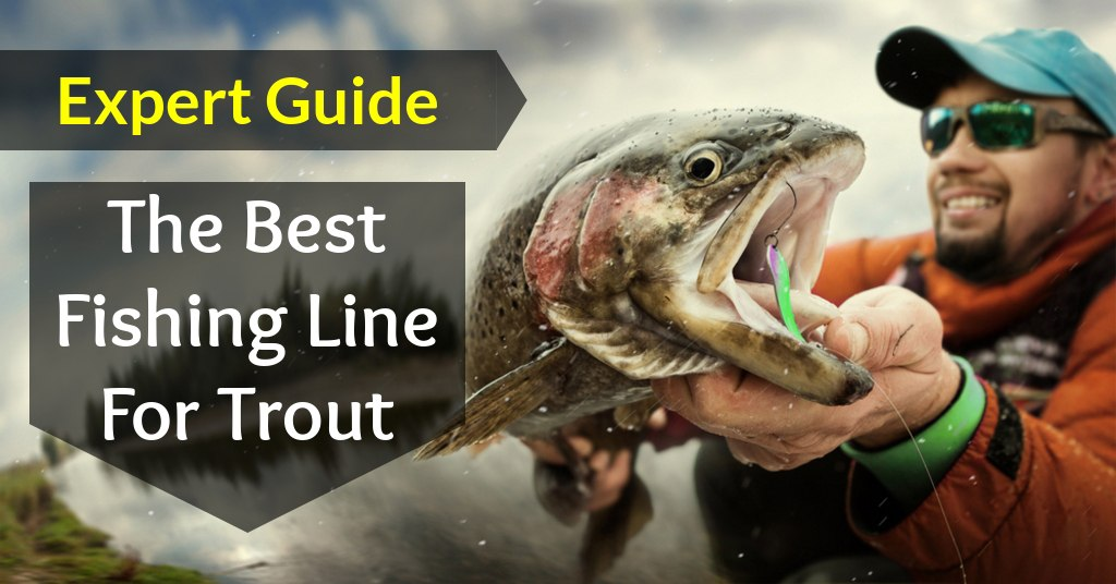 Expert Guide For The Best Fishing Line For Trout