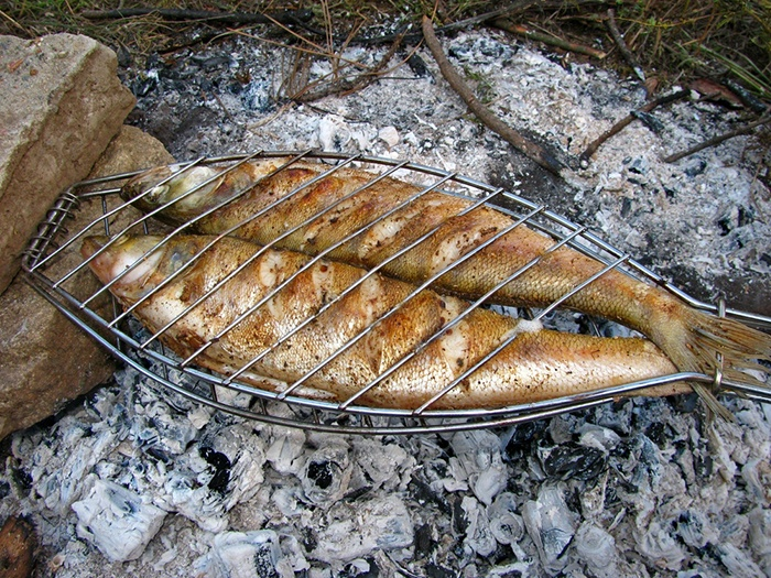 Walleye cooked in the coals of the fire.