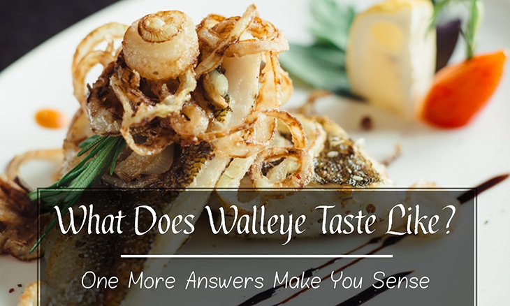 What Does Walleye Taste Like? One More Answers Make You Sense