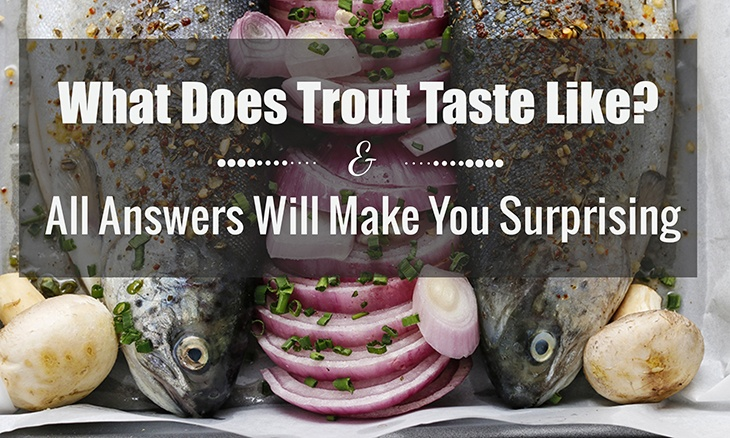 What Does Trout Taste Like? – All Answers Will Make You Surprising